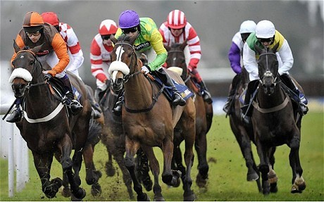King George VI Chase | BIG RACES
